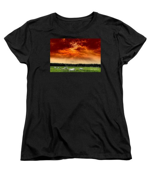 Women's T-Shirt (Standard Cut) featuring the photograph Alberta Canada Cattle Herd Hdr Sky Clouds Forest by Paul Fearn