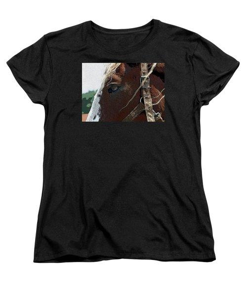 An Old Friend Women's T-Shirt (Standard Cut) by Yvonne Wright