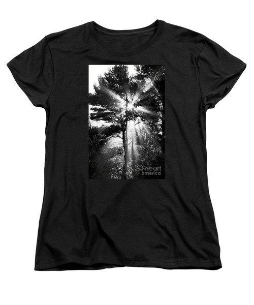 Angel Sun Women's T-Shirt (Standard Cut)