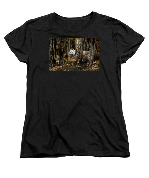 Women's T-Shirt (Standard Cut) featuring the photograph Arctic Wolf In Forest by Wolves Only