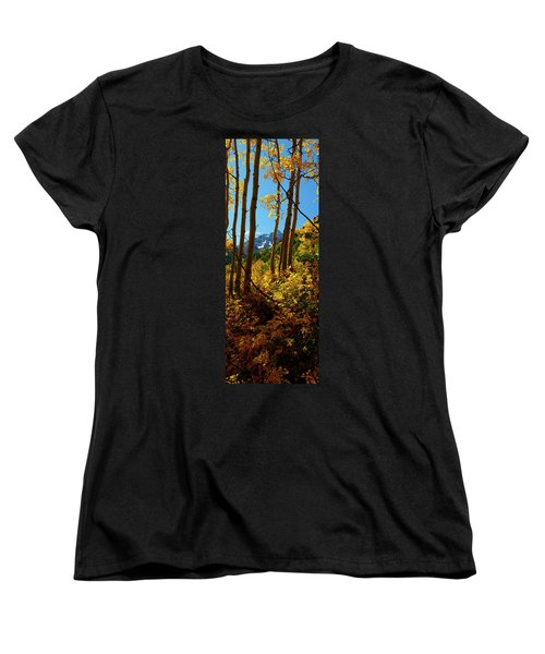 Autumn Brilliance 2 Women's T-Shirt (Standard Cut) by Jeremy Rhoades
