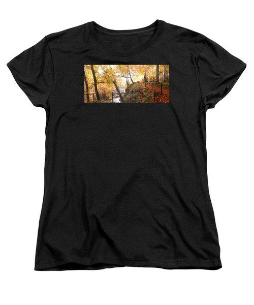 Autumn Colors Women's T-Shirt (Standard Cut)