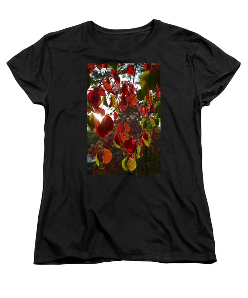 Autumn Dogwood In Evening Light Women's T-Shirt (Standard Cut) by Michele Myers