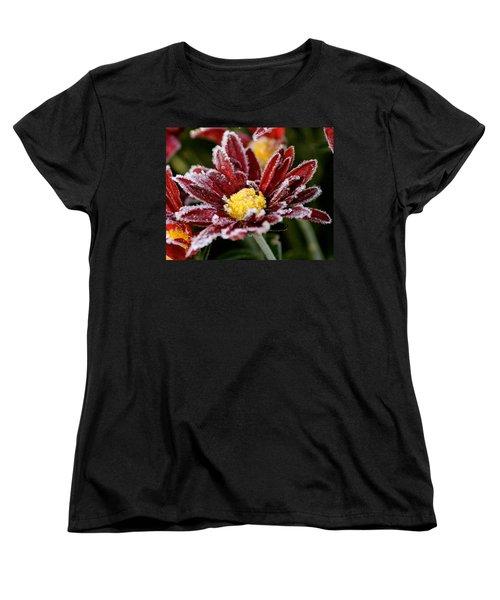 Autumn Frost Women's T-Shirt (Standard Cut) by Tiffany Erdman