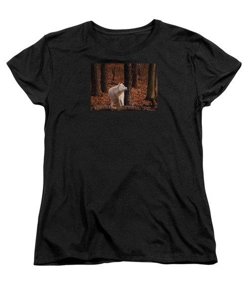 Autumn Gaze Women's T-Shirt (Standard Cut)