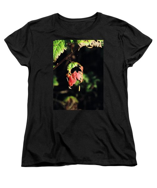 Women's T-Shirt (Standard Cut) featuring the photograph Autumn Leaf by Cathy Mahnke