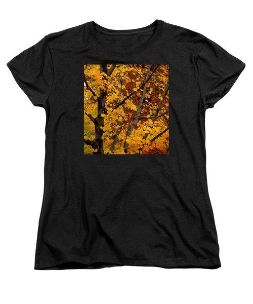 Autumn Moods 21 Women's T-Shirt (Standard Cut)