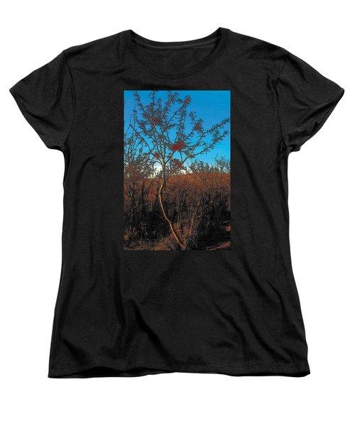 Autumn Women's T-Shirt (Standard Cut) by Terry Reynoldson
