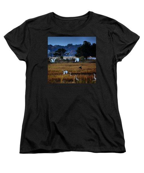 Aviary Convention Women's T-Shirt (Standard Cut) by Robert McCubbin