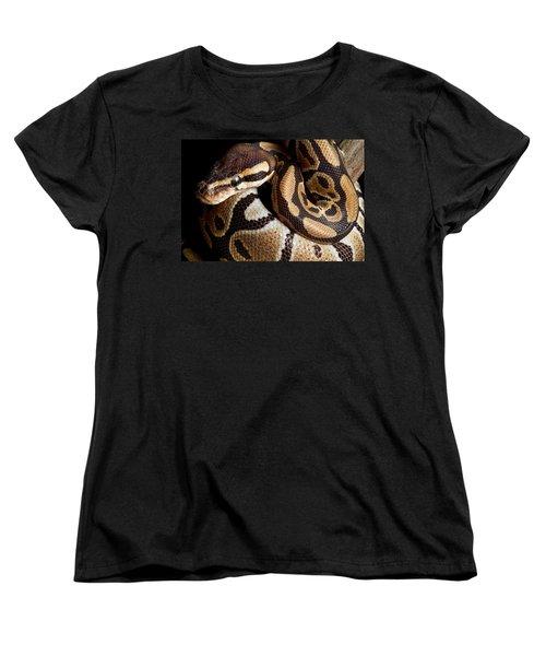 Ball Python Python Regius Women's T-Shirt (Standard Cut) by David Kenny