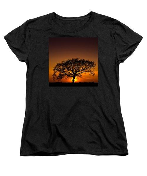 Baobab Women's T-Shirt (Standard Cut) by Davorin Mance