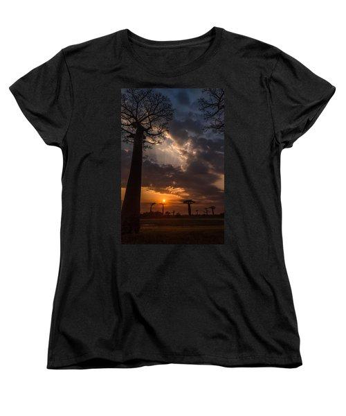 Baobab Sunrays Women's T-Shirt (Standard Cut) by Linda Villers