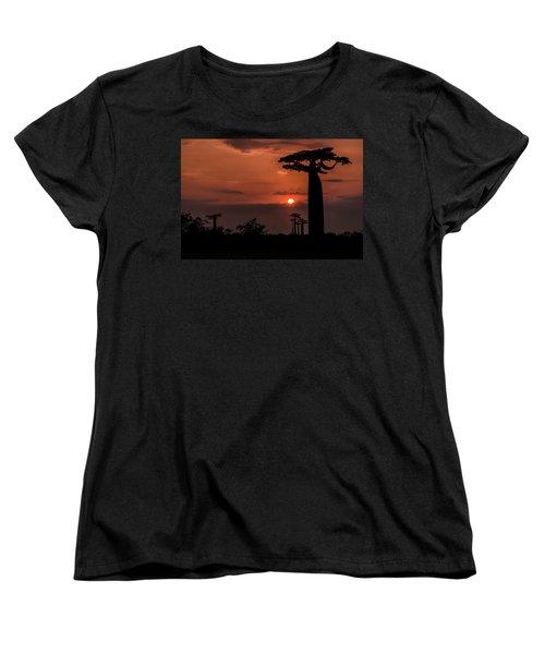 Baobab Sunrise Women's T-Shirt (Standard Cut) by Linda Villers