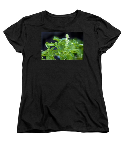 Women's T-Shirt (Standard Cut) featuring the photograph Basil With White Flowers Ready For Culinary Use by David Millenheft