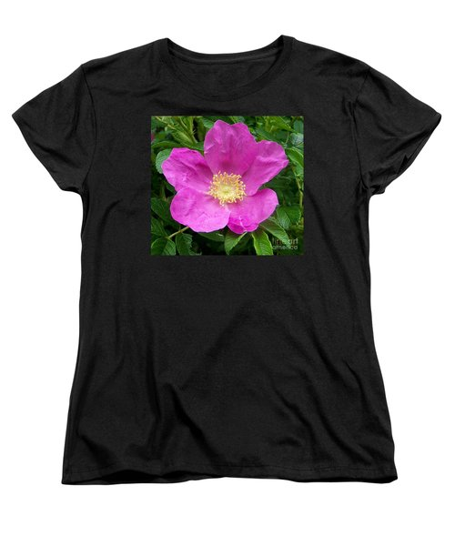Pink Beach Rose Fully In Bloom Women's T-Shirt (Standard Cut) by Eunice Miller