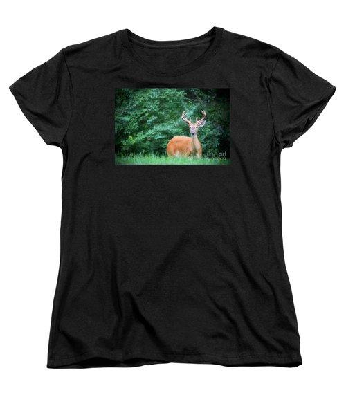 Beautiful Buck  Women's T-Shirt (Standard Cut)