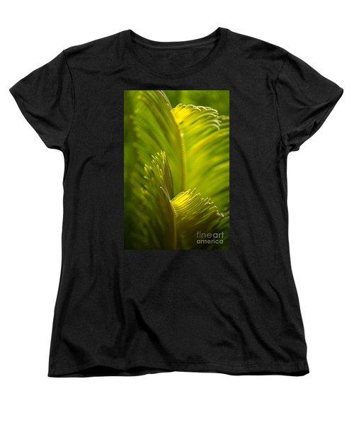 Beauty In The Sunlight Women's T-Shirt (Standard Cut) by Deb Halloran