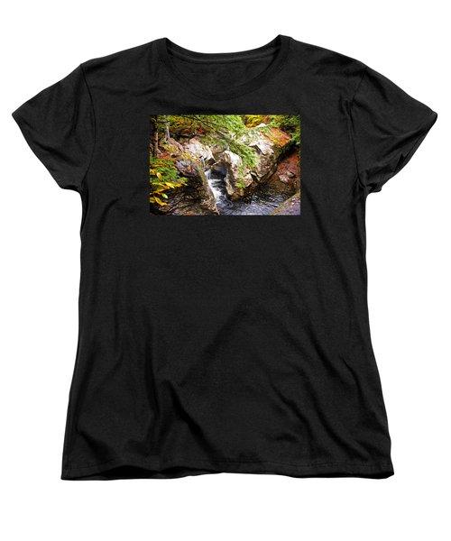 Women's T-Shirt (Standard Cut) featuring the photograph Beside The Water by Bill Howard