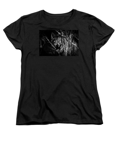 Beware The Woods Women's T-Shirt (Standard Cut) by Wes and Dotty Weber