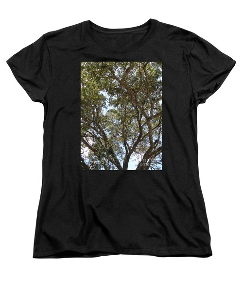 Big Oak Tree Women's T-Shirt (Standard Cut) by Joseph Baril