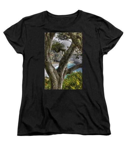 Big Sur Mc Way Falls At Julia Pfeiffer State Park-1 Central California Coast Spring Early Afternoon Women's T-Shirt (Standard Cut) by Michael Mazaika