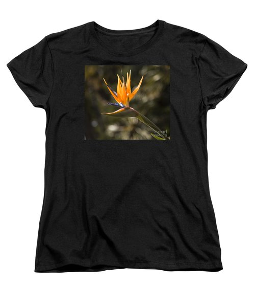 Bird Of Paradise Women's T-Shirt (Standard Cut) by David Millenheft