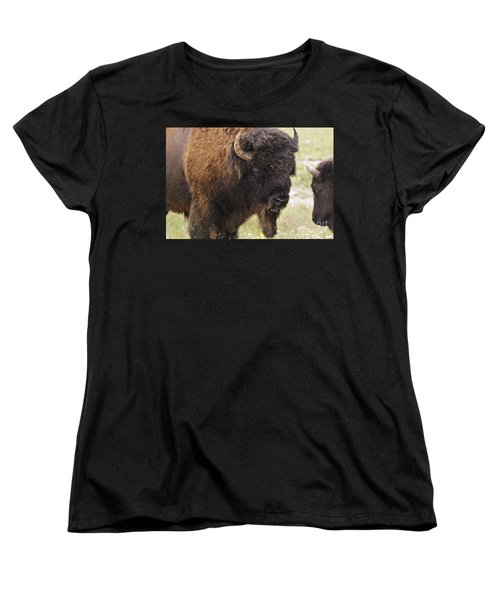 Bison From Yellowstone Women's T-Shirt (Standard Cut) by Belinda Greb