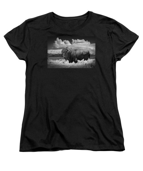 Black And White Photograph Of An American Buffalo Women's T-Shirt (Standard Cut)
