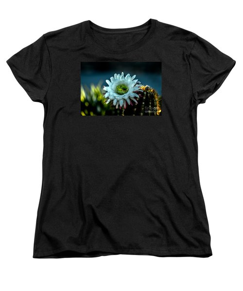 Blooming Argentine Giant Women's T-Shirt (Standard Cut) by Robert Bales