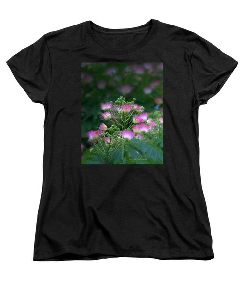 Blooms Of The Mimosa Tree Women's T-Shirt (Standard Cut) by Jeanette C Landstrom