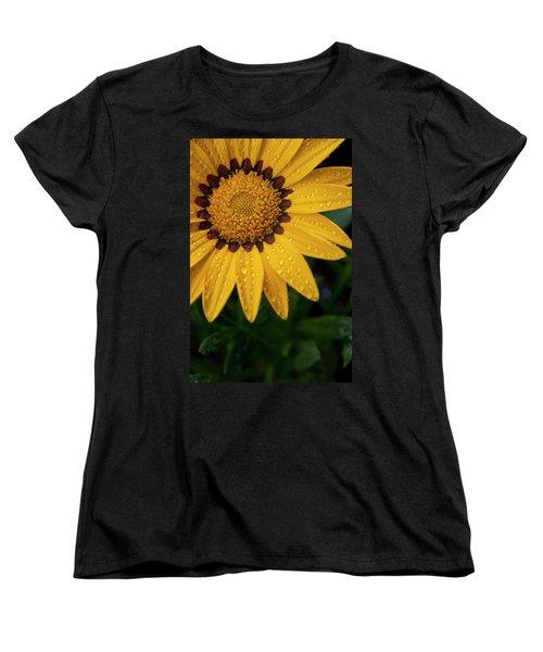 Blossom Women's T-Shirt (Standard Cut) by Ron White
