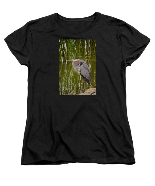 Blue Heron Women's T-Shirt (Standard Cut) by Duncan Selby