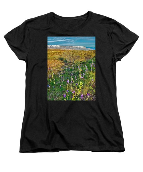 Bluebonnets And Creosote Bushes In Big Bend National Park-texas Women's T-Shirt (Standard Cut) by Ruth Hager