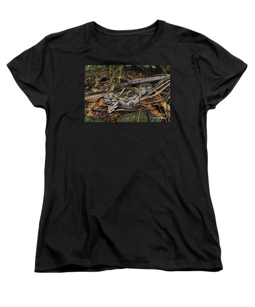 Boa Constrictor Women's T-Shirt (Standard Cut) by Francesco Tomasinelli