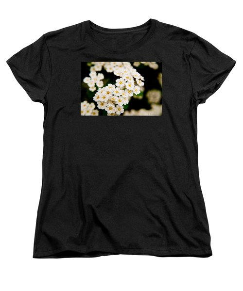 Bridal Veil Spirea Women's T-Shirt (Standard Cut) by Brenda Jacobs