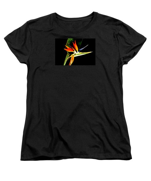 Brilliant Women's T-Shirt (Standard Cut) by Diane Merkle