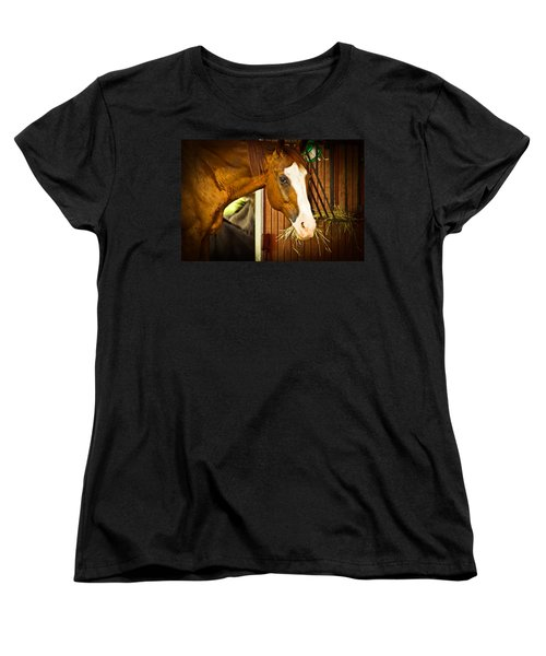 Brown Horse Women's T-Shirt (Standard Cut) by Joann Copeland-Paul