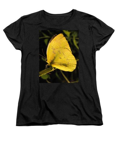 Butterscotch Women's T-Shirt (Standard Cut) by Jennifer Wheatley Wolf