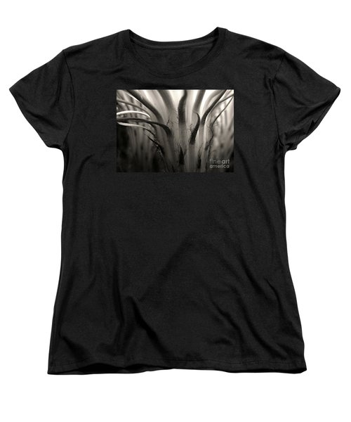 Cactus Bloom In Sepia Women's T-Shirt (Standard Cut) by Ellen Cotton