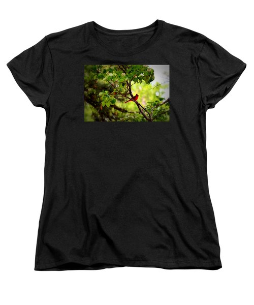 Cardinal In Dogwood Women's T-Shirt (Standard Cut) by Tara Potts