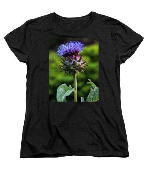 Cardoon Women's T-Shirt (Standard Cut) by Chris Flees