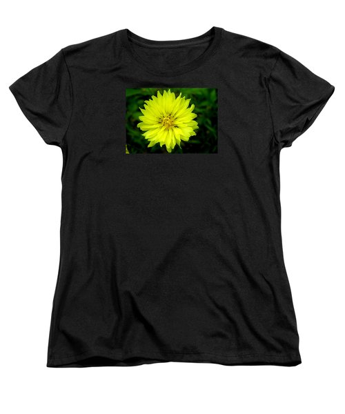 Women's T-Shirt (Standard Cut) featuring the photograph Wild Carolina Desert Chicory by William Tanneberger