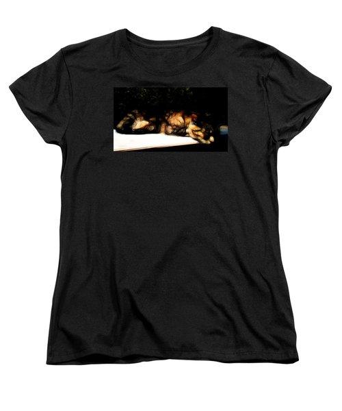 Cat Nap 1 Women's T-Shirt (Standard Cut) by William Horden