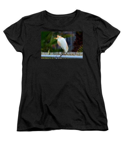Women's T-Shirt (Standard Cut) featuring the photograph Cattle Egret Breeding Plumage by Debra Martz