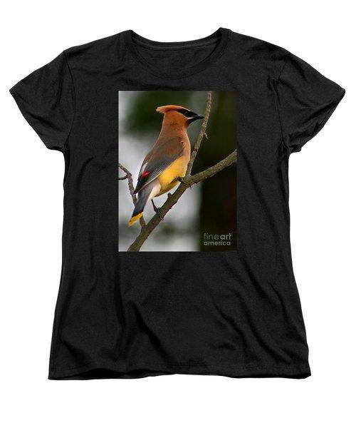 Cedar Wax Wing II Women's T-Shirt (Standard Cut) by Roger Becker