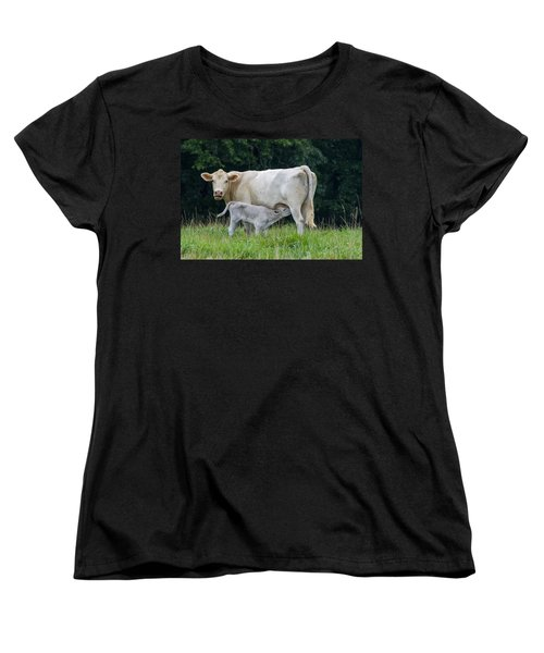 Charolais Cattle Nursing Young Women's T-Shirt (Standard Cut)