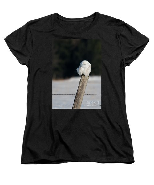 Cheeky Snowy Women's T-Shirt (Standard Cut) by Cheryl Baxter