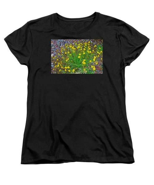 Chinchweed In Big Bend National Park-texas Women's T-Shirt (Standard Cut) by Ruth Hager