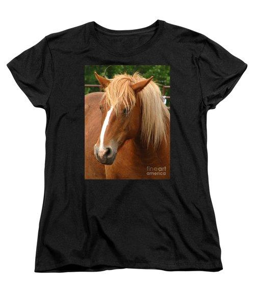 Cinnamon Girl Women's T-Shirt (Standard Cut) by Greg Patzer