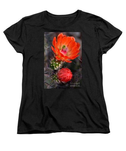 Claret Cup Cactus Women's T-Shirt (Standard Cut) by Deb Halloran